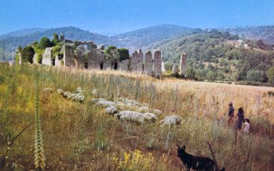 Una vecchia cartolina dell'abbazia di Corazzo