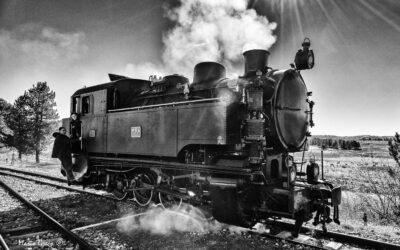 Ferrovie Calabro Lucane. Manovre sulla tratta Mucone – Silvana Mansio