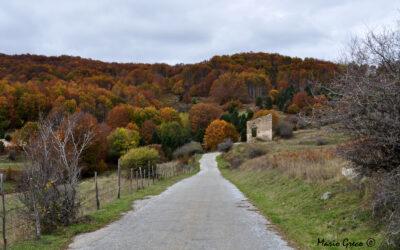 Foliage a Carlomagno