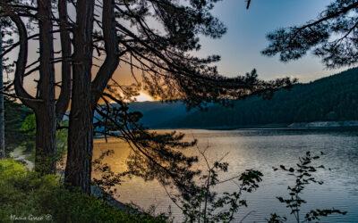 Concerto sul Lago