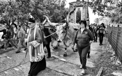 Processione della Madonna di Capo Colonna